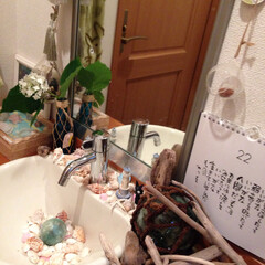 ダイソー/トイレ 手洗い場 貝殻 灯台 オブ... ダイソーの貝殻🐚のセットと灯台のオブジェ…