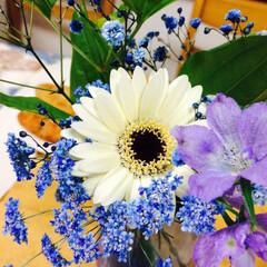 花/フラワー/グリーン/アレンジメント/ブルー/紫色/... 野草みたいな質素さがあるけど清涼感のある…