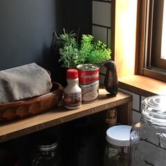 DIY/雑貨/インテリア/住まい/キッチン キッチンの一角^_^  好きなペンギンを…(1枚目)