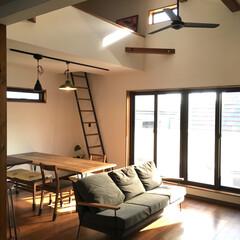 ハシゴ/SQUARE/インテリア/家具/住まい 昼過ぎの射し込む光が好きです^_^