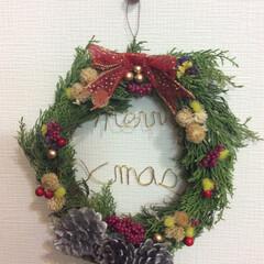 クリスマス/ワイヤークラフト/リサイクル/リース/DIY/雑貨/... 土台の葉は、剪定した木、ドライフラワーは…