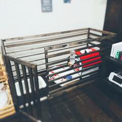 SPF材/犬サークル/犬ゲージ/DIY 犬ハウスDIY