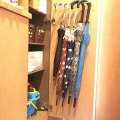 玄関/傘収納/DIY/100均 毎日使うものではない傘は、うちの狭い玄関…(1枚目)