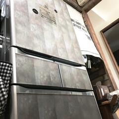 冷蔵庫/キッチン/mt/mtマスキングテープ/マスキングテープ/セリア/... 気に入らなかった冷蔵庫前面の色。 mtマ…