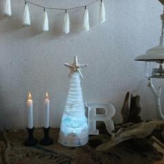 クリスマスツリー/ビーチグラス/スカシカシパン/セリア/ダイソー/キャンドゥ/... 100均と海で拾ったもので作った 海を感…