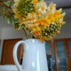 はじめてフォト投稿/花のある暮らし/良い香りの花/癒し 以前~ご近所さんからいただいた♪ リビン…
