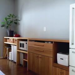 インテリア/シンプル/ニトリ/DIY/カウンター/キッチン/... 対面式キッチンの収納部分です☆ 高さがあ…