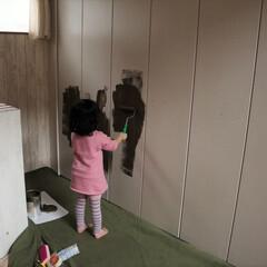 塗装/クローゼット扉/ペンキ塗装/ペンキ/DIY ありがちですが、うちでは広い面にペンキ塗…