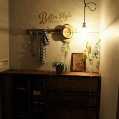 照明器具/エジソン電球/玄関/ペンダントライト/後藤照明 これは、夜の玄関です。 写真で見るより実…