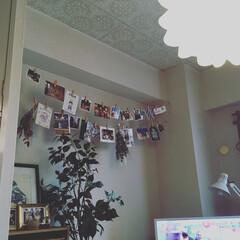 ウォールデコ/写真/100均/インテリア 写真やポストカードを 百均で買った麻紐で…