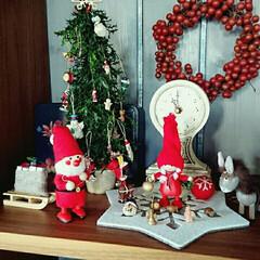 サンキライ/ノルディカニッセ/クリスマス