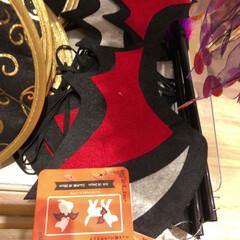 ペット用/ハロウィン仮装/ハロウィン/100均/セリア セリアのペット用のコウモリの羽🦇 ハロウ…
