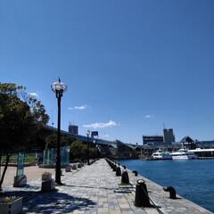 LIMIAおでかけ部/風景 職場近くの港の風景。  港そばの施設内に…