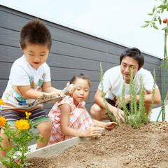 屋上/マイホーム/新築/戸建て/庭/子育て/... 自宅の屋上は親子の学びの場。 野菜を育て…