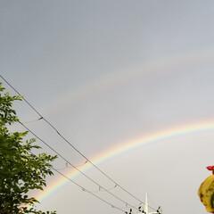 散歩/虹 朝の散歩🐶 小さな幸せ😃💕見つけた🎵