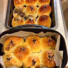 料理/パン/レシピ/ダッチオーブン ダッチオーブンで あんこから手作りあんぱ…