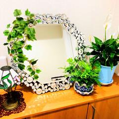 ステンドガラスランプ/観葉植物/風水/八角形ミラー/玄関あるある 引っ越し先の新しい玄関は どうしようか色…
