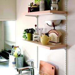 キッチン/木材/テーブル/チェア/スツール/シェルフ/... オープン棚に日用品を飾るように並べて。