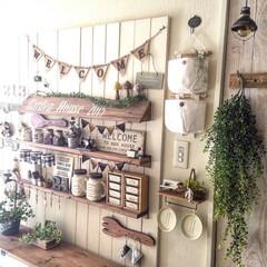 DIY/玄関/板壁/100均/フェイクグリーン/ガーランド/... 日当たりの悪い玄関だけど白くペイントして…