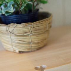 洗面所/かわいい家/リフォーム/造作/棚/棚板/... 洗面所に造作した棚にひと工夫。 大工が棚…