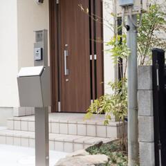 エクステリア/外構/ガーデニング/庭/植栽/植物/... お家の裏に植えられていた植栽を玄関前に移…