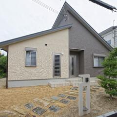 招き屋根/外観/家/デザイン/住宅/平屋/...  「招き屋根」という段違いのデザインを採…