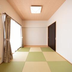 リビング/和室/モダン/和モダン/琉球畳/畳のある暮らし/... リビング横の洋室を、琉球畳を敷いたモダン…