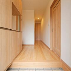 建具/明るい家/廊下/玄関ホール/新築/一戸建て 建具はライトな色を採用、明るく奥行きの感…