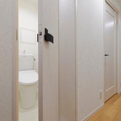 省スペース/有効活用/折り戸/折れ戸/ドア/建具/... 省スペースの折り戸を採用して、狭さを感じ…