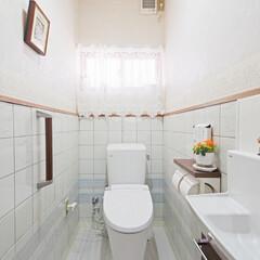 カビ/床/リフォーム/トイレリフォーム/トイレの内装/トイレ取り替え/... カビが生えていた床をやり替え、トイレと手…