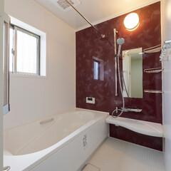 足が伸ばせる/広い浴槽/大きなお風呂/システムバス/アライズ 足が伸ばせる大きな浴槽付きのシステムバス…