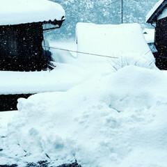 田舎暮らし/雪国の住まい/ゆき/あけおめ/冬/おうち/... ゚・:*:・。(〃゚ω゚)ノ★A HAP…(1枚目)