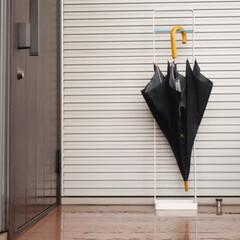 アンブレラハンガー/傘収納/シンプル 玄関先で濡れた傘を掛けるだけで乾かすこと…