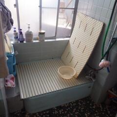 お風呂/リフォーム/劇的/改造/おしゃれ/狭い/... before