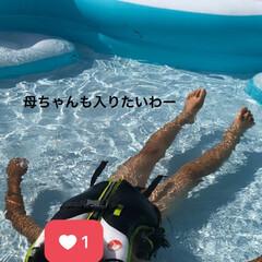 プール/夏休み/お家プール/夏 お家プール。 暑過ぎて母ちゃんも入りたい!