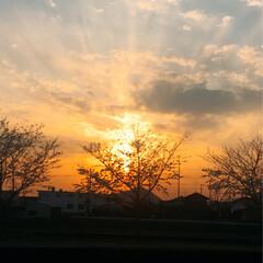 春の空/夕景 冬の空から、春の明るい夕景になってきまし…