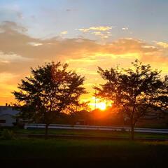 夕焼け/秋の空 まだ、暑いですが、空は秋を感じ日の落ちる…(3枚目)