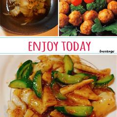 イカのゴマだれ炒め/白菜とシーチキン煮/おうちごはん/フード イカときゅうりのゴマだれ炒め 鶏だんごの…