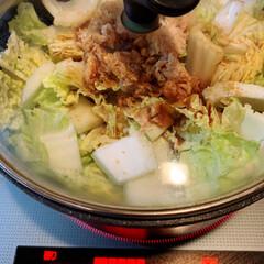 イカのゴマだれ炒め/白菜とシーチキン煮/おうちごはん/フード イカときゅうりのゴマだれ炒め 鶏だんごの…(5枚目)