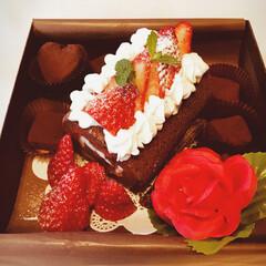 チョコレートケーキ/スイーツ/バレンタイン/ハンドメイド こちらは、とりあえず、一応?旦那さんに作…(1枚目)