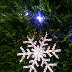 クリスマスの飾り付け 那須プレミアム・アウトレットのクリスマス…