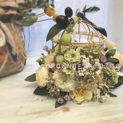 鳥かごアレンジ/鳥かご/新築祝い/ナチュラル/花のある生活/花のある暮らし/... 新築祝いに作りました♪