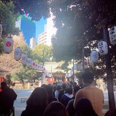 渋谷/LIMIAスタッフ/初詣/あけおめ/フォロー大歓迎/冬/... LIMIAスタッフみんなで、近くの神社に…