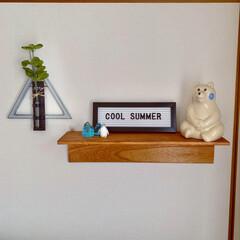 ウッドハンギングベーストライアングル/アイスブロック/ペンギン/レターボード/しろくま貯金箱/飾り棚ディスプレイ/... ディスプレイ、ちょっと変えました٩(๑>…