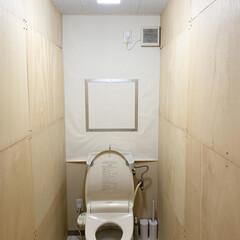 2×4材/ラブリコ/途中経過/腰壁風/壁紙屋本舗/壁紙/... トイレ改造計画・途中経過。 コンクリート…