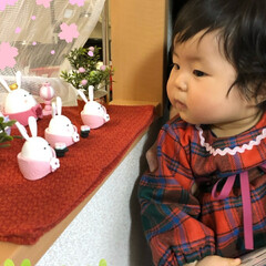 手作りベビー服/R/Fさんの雛飾り/ひな祭り/ピンク/ハンドメイド ひな祭り。昨年作っていただいたR/Fさん…(2枚目)