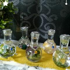 ハーバリウム/セリア 小瓶ハーバリウム。 シロツメ草などを入れ…