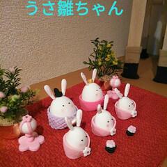 手作りベビー服/R/Fさんの雛飾り/ひな祭り/ピンク/ハンドメイド ひな祭り。昨年作っていただいたR/Fさん…