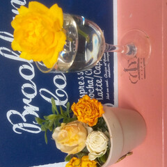 お花のある暮らし/キッチン/黄色の薔薇/雑貨 ベランダの鉢植え、黄色の薔薇が次々に咲い…(2枚目)