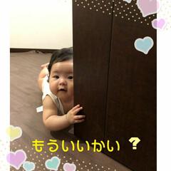 ママ見っけ❢/令和の一枚 孫娘、今日で、6ヶ月になりました。寝返り…
